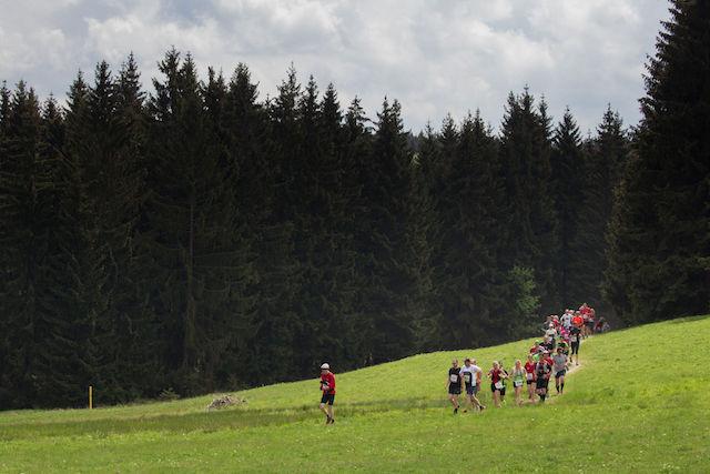 Rennsteiglauf 2016