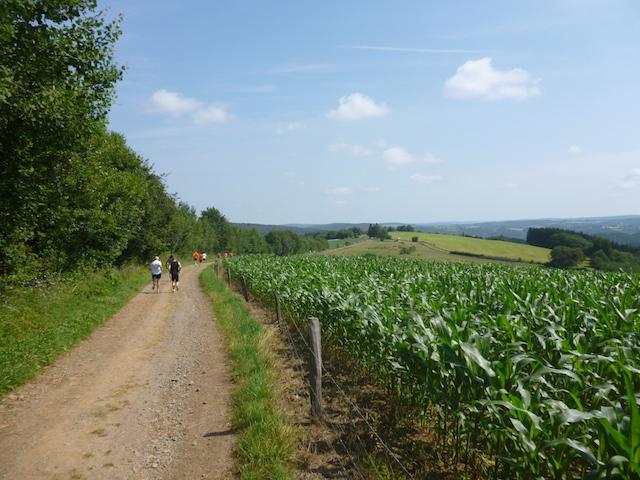 Jogging de Menil-Favay - 2